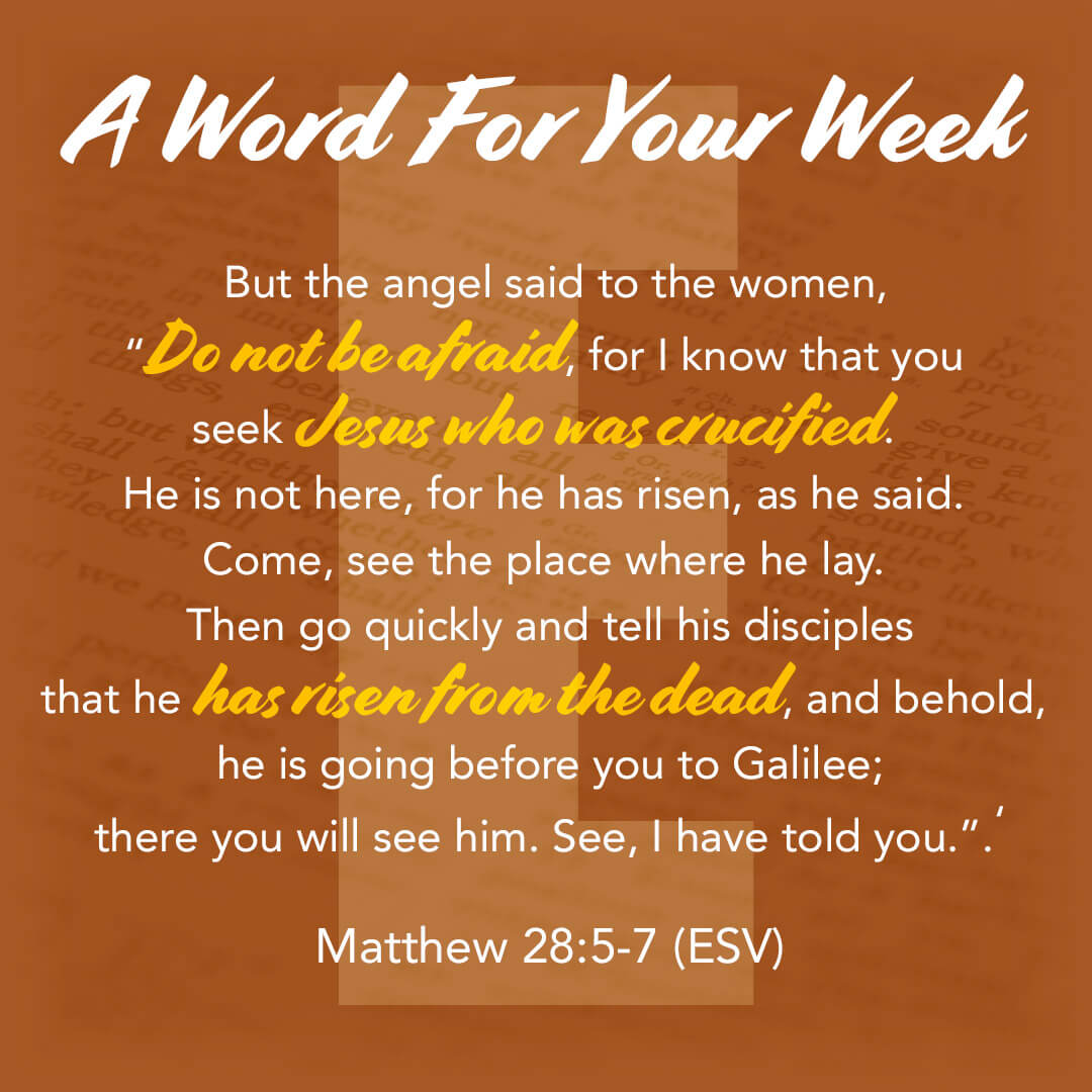 LMI's 'A word for your week' devotional taken from Matthew 28:5-7
